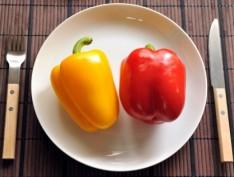 日本人はミネラルが不足?ミネラルが最も重要栄養素な理由