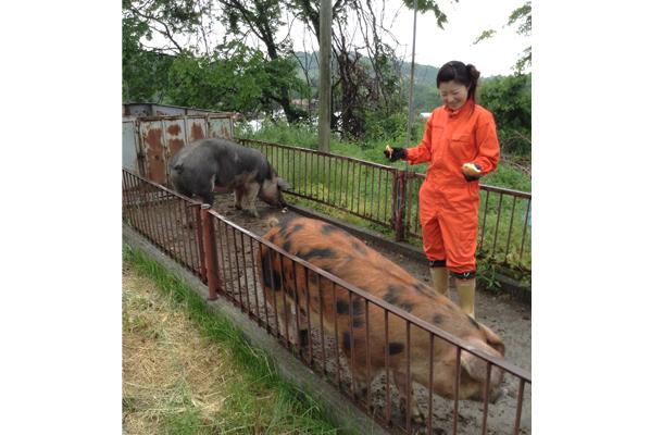 ありが豚通販