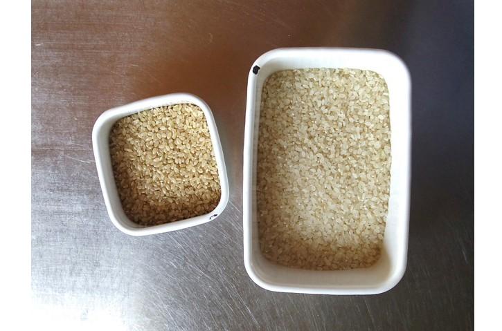 お米の精米
